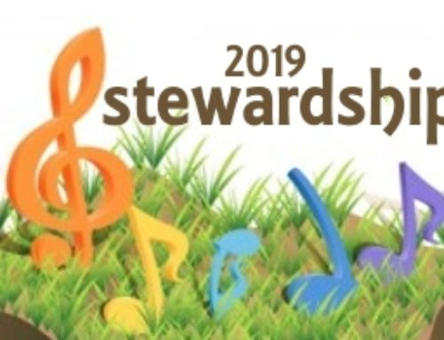 2018-2019 Stewardship Info and Forms